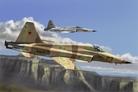 F-5E Tiger II Fighter 1:72