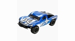 Torment 1/10 2WD Brushless RTR SCT: Blue/White  ECX03008